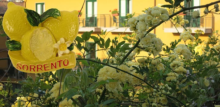 sorrento-lemon-yellow-715