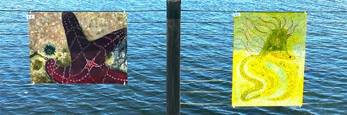 bandon-boardwalk-artshow-student-art