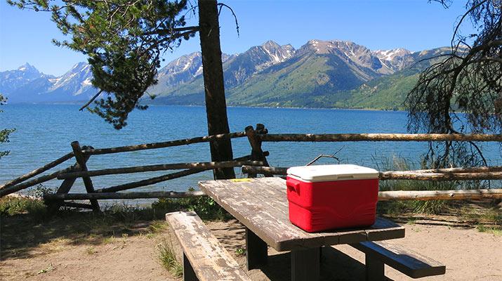 picnic-area-jackson-lake-grant-teton-wyoming-715