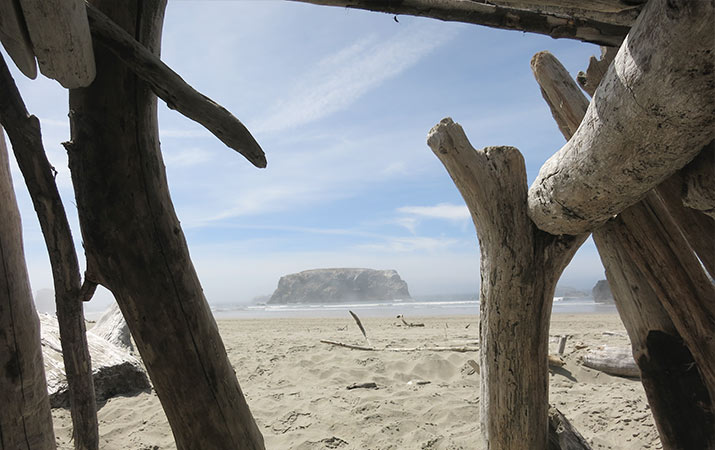 driftwood-fort-coquille-point-bandon-oregon-715