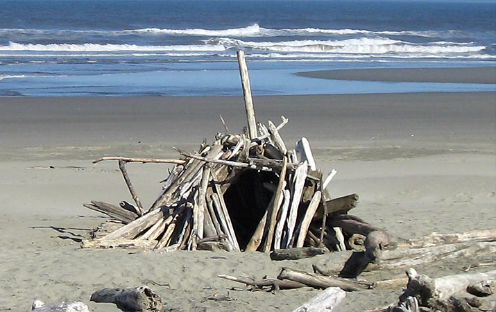 driftwood-fort-robinson-crusoe-bandon-oregon-715