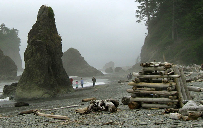 driftwood-fort-ruby-beach-washington-715