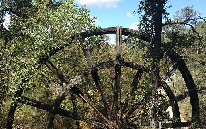 jackson-kennedy-tailing-wheels-park-wheel1-715