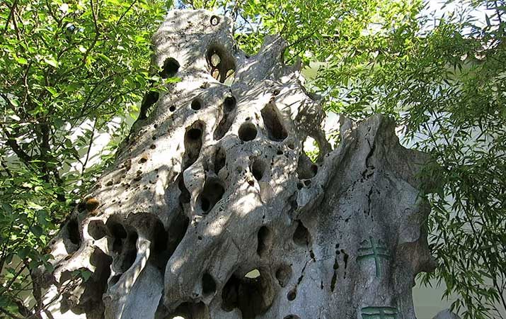 lan-su-chinese-garden-portland-lake-tai-rock-715
