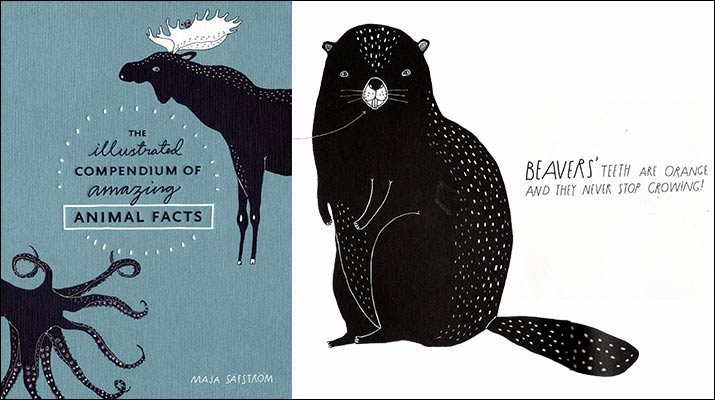 the-illustrated-compendium-of-amazing-animal-facts-715