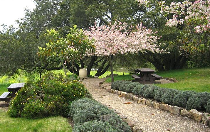 bartholomew-park-winery-picnic-area-715