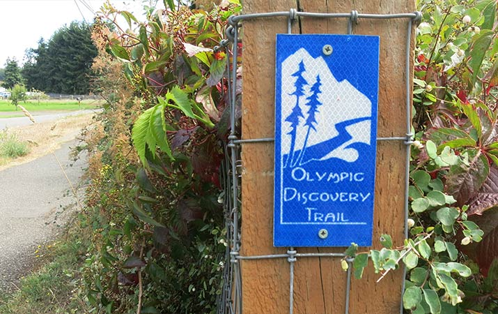 olympic-discovery-trai-bike-715