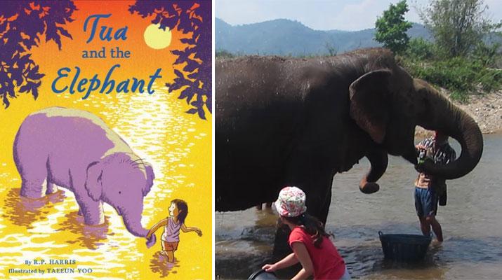 Tua-Elephant-Nature-Park-Thailand