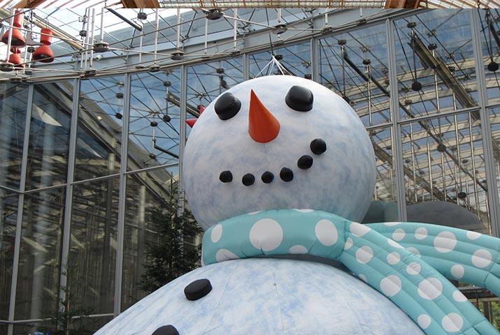 cal-academy-snowman-theater