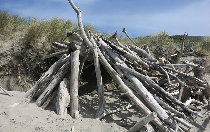 driftwood-fort-bandon-oregon-basic-design-715