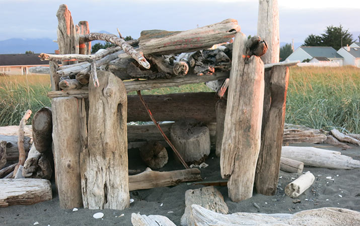 driftwood-fort-sequim-washington-715