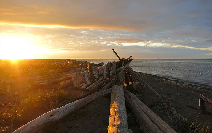 driftwood-fort-sunset-sequim-washington-715
