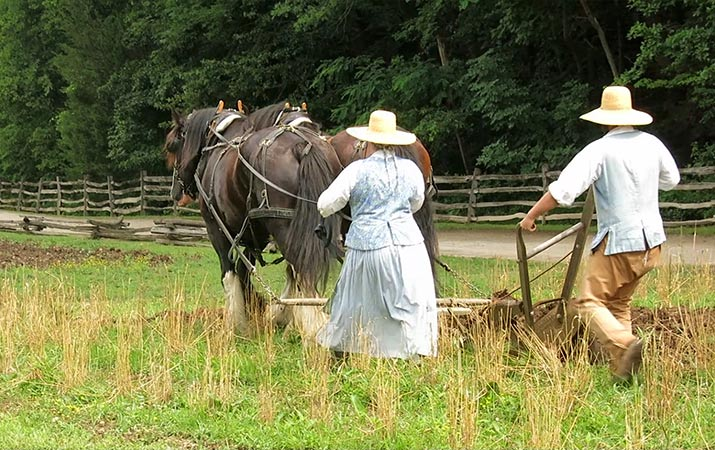 mount-vernon-pioneer-farm-plowing-field-715