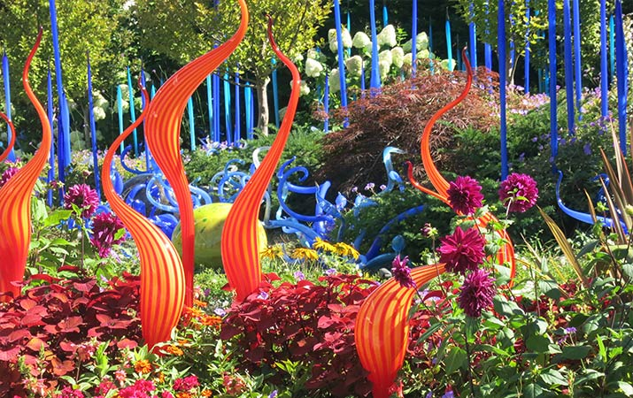 seattle-chilhuly-garden-live-plants-glass-sculptures-715