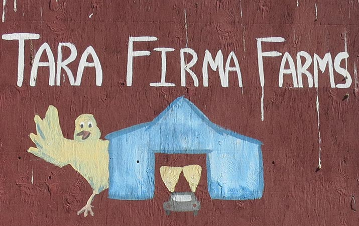 sonoma-county-tara-firma-farms-715