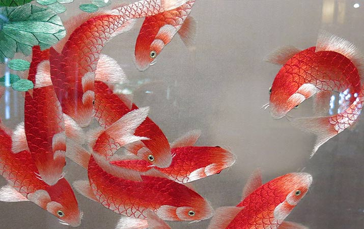 lan-su-chinese-garden-portland-suzhou-silk-embroidery-red-fish-715