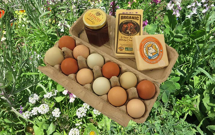sonoma-farm-trails-eggs-cheese-honey-715
