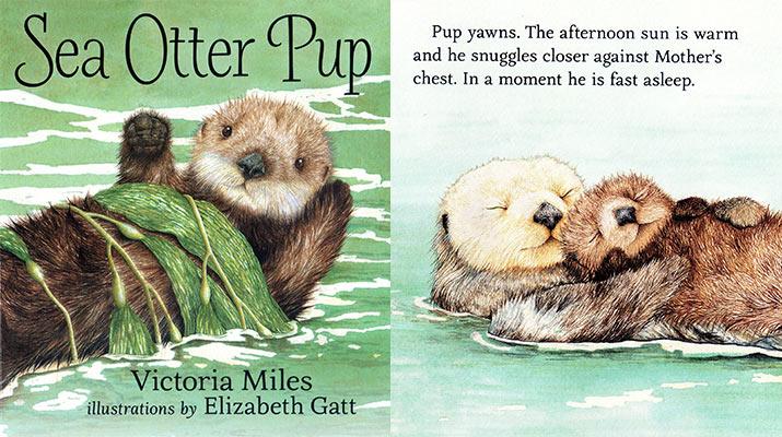 sea-otter-pup-book-715